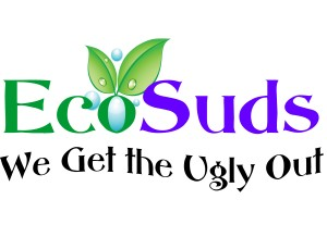 Ecosuds Carpet and Upholstery Cleaning Specials Hamilton