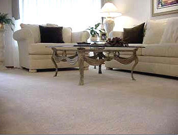 Ecosuds Upholstery Cleaning Burlington